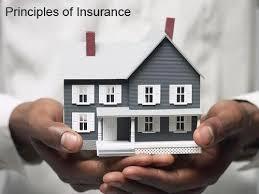 insurance eee